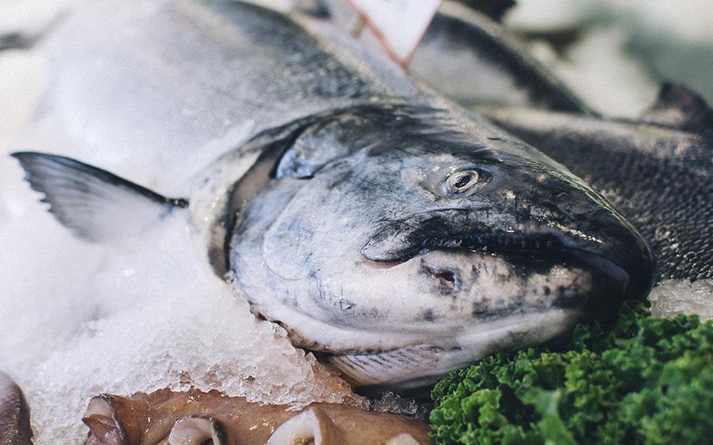 Trucos para conservar el pescado fresco