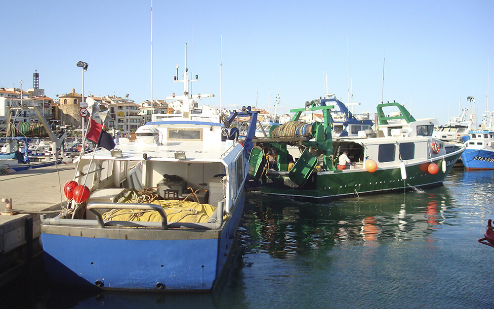 What is the census of the fishing fleet?