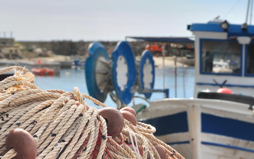Pesca de bajura ¿en qué consiste?