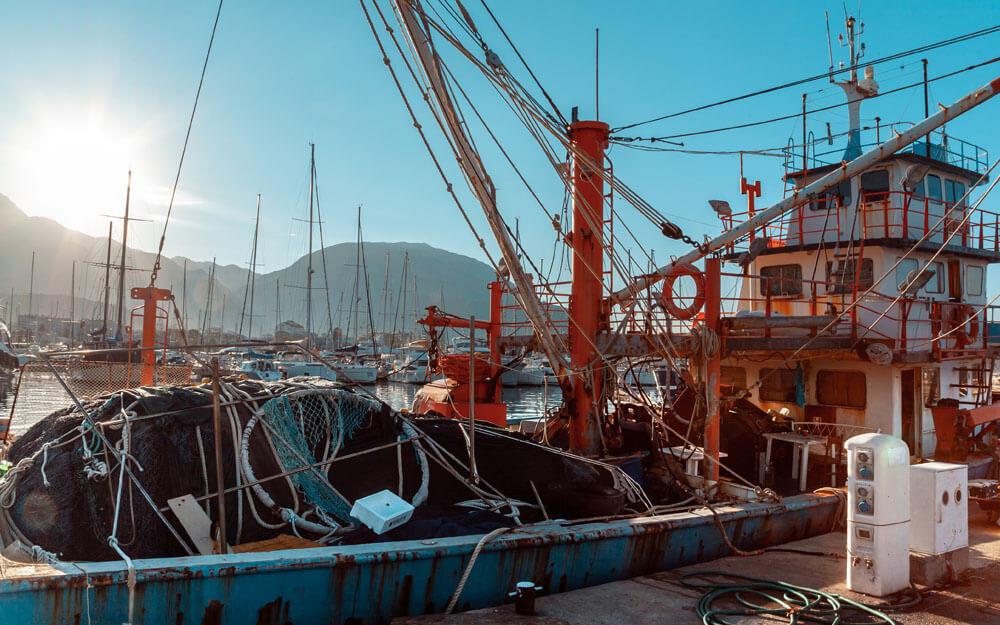 El control pesquero internacional se hace en Vigo