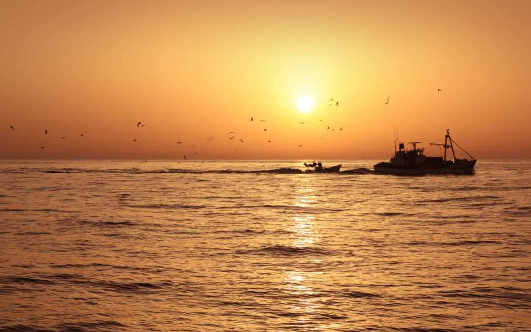Mejoras laborales para los pescadores: Guía fácil