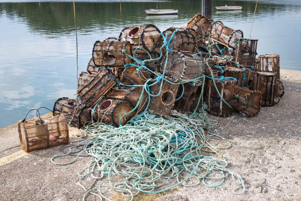 Veda de pesca en Galicia: cuando hay que parar, nasas