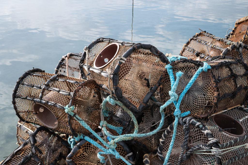 El furtivismo en Galicia es una lacra histórica, pesca ilegal