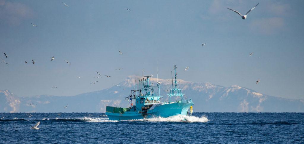 Sector pesquero gallego en lucha por el Brexit, consejo de pesca