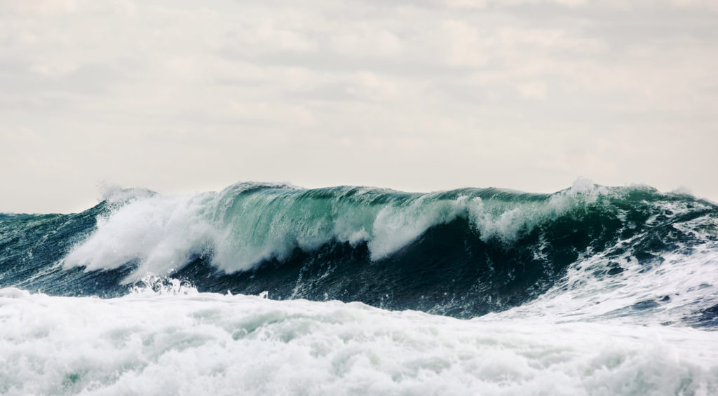 Sector pesquero gallego en lucha por el Brexit, política pesca común