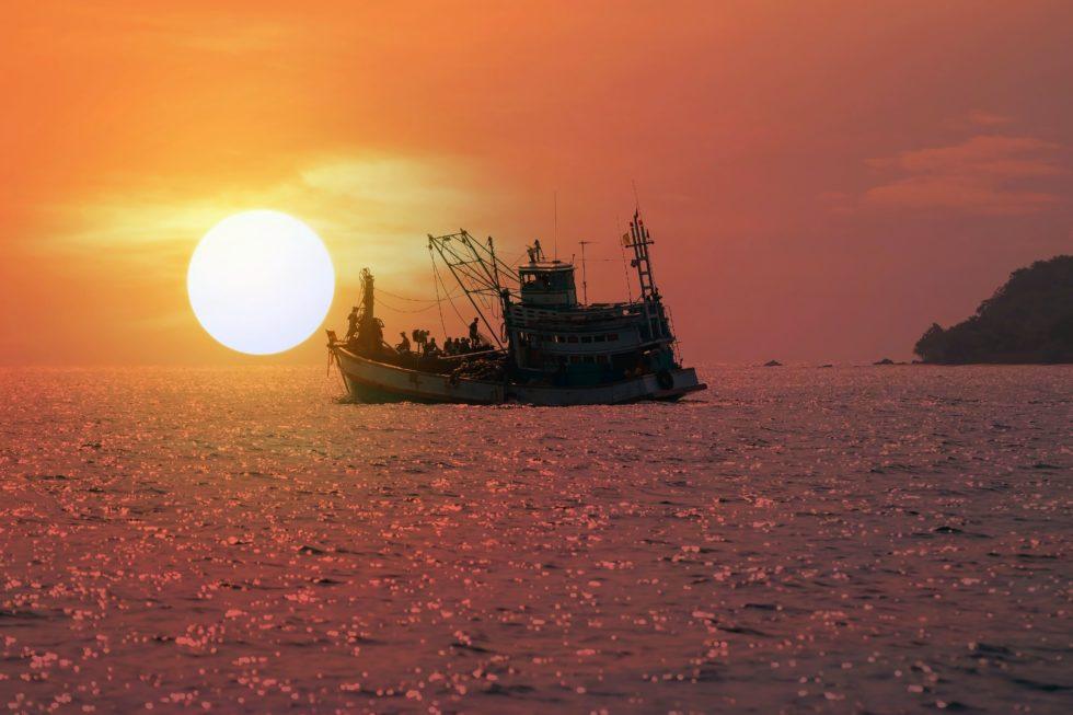 Las ayudas también ponen el foco en la embarcaciones y la sostenibilidad