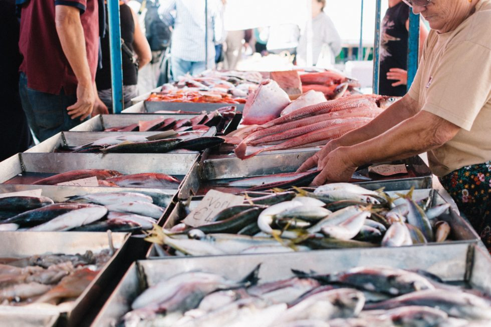La industria local pesquera son clave en los fondos europeos de pesca FEMP