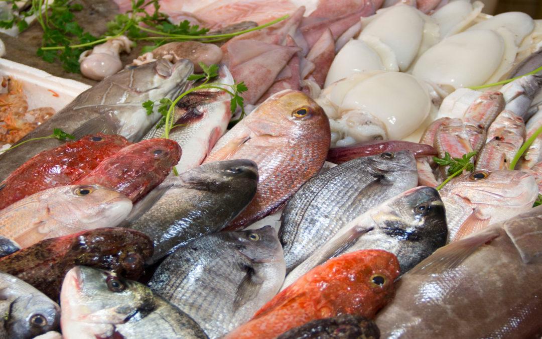 Pescados y mariscos de temporada: Aprende a comer ¡Y conecta con siglos de tradición y trabajo en el mar!