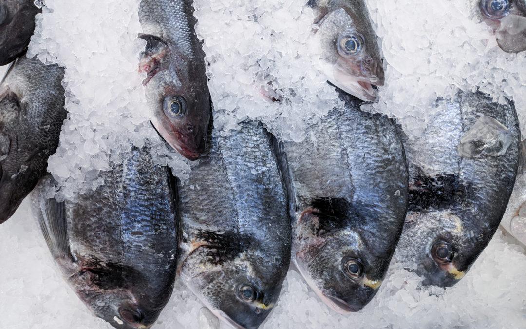 Consumo de pescado en la UE: La dependencia