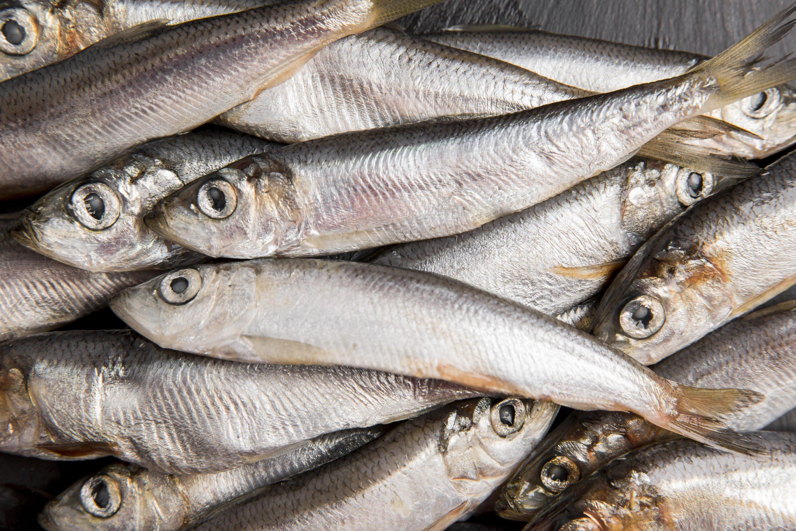 consumo pescado ue