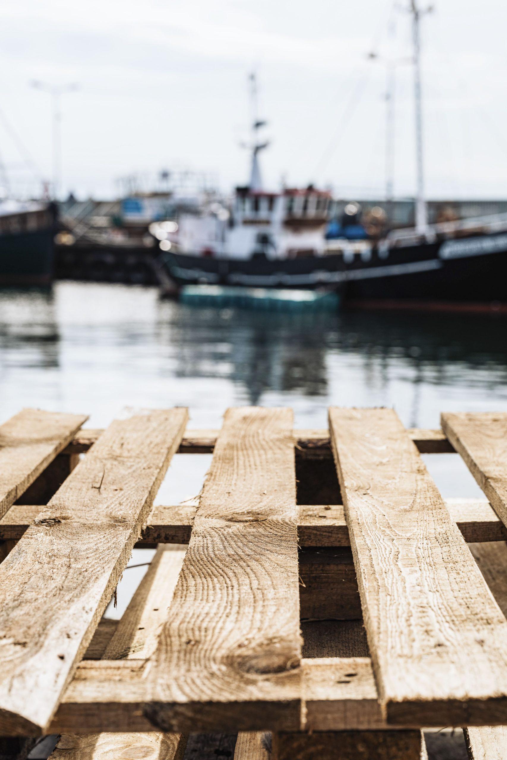 agencia europea control pesca