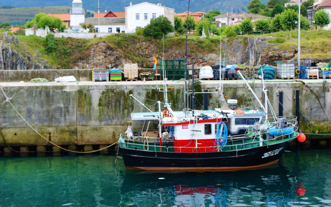 Pesca de la Sardina en Galicia 2021