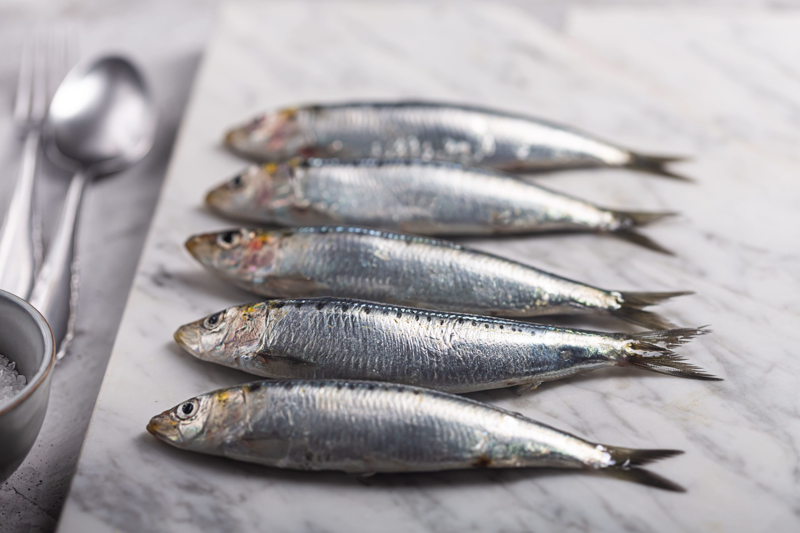 sardinas horno